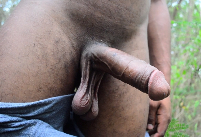 Black Dick Armano Tito Hand Job